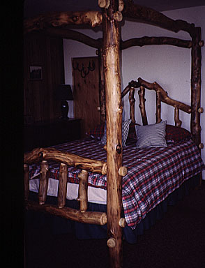 Aspen Log Canopy Bed